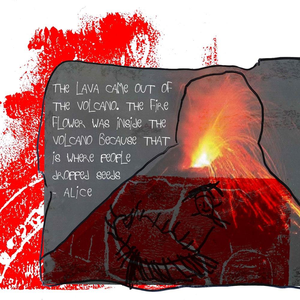 Fire Flower Story